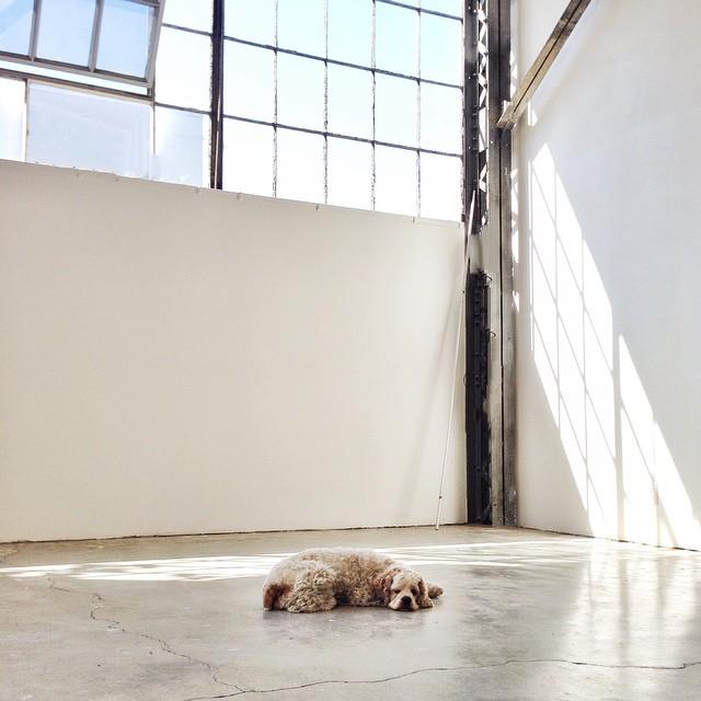 her studio2